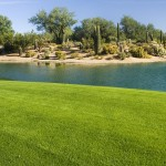 Sun City Festival Golf Course Homes for Sale