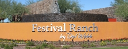 Sun City Festival Real Estate
